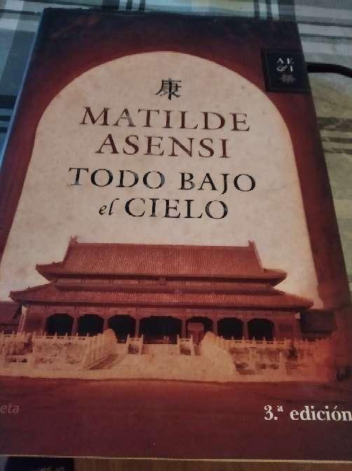 Imagen novela todo bajo el cielo de Matilde asensi